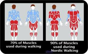 Nordic Walking Not Just A Simple Walk All The Benefits Of